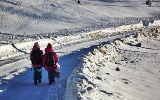 Török Zoltán: Kolozs megye minden iskolájában lesz hétfőn tanítás