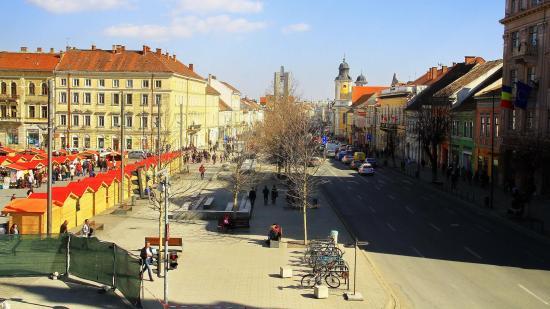 Beismerték tévedésüket a kolozsvári városháza illetékesei