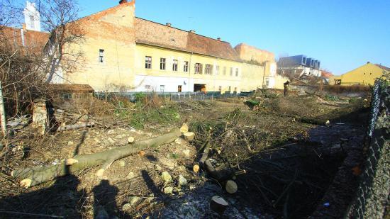 Beigazolódik: zöldövezetet taroltak le a Petőfi utcában