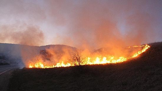 Tehetetlen a tűzoltóság a tarlótüzek okozóival szemben