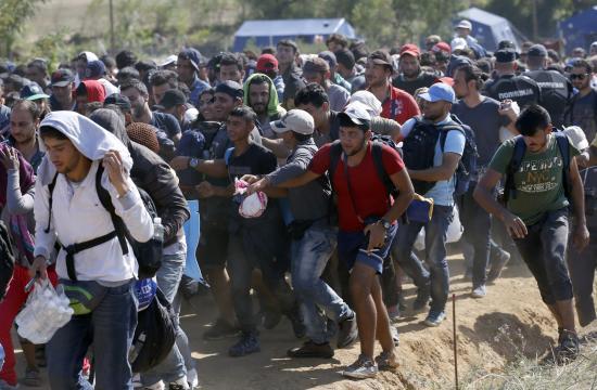 Harmincnégy szíriai és pakisztáni állampolgárt tartóztattak fel a szerb határon