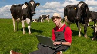Legtöbb 180 napot dolgozhatnak évente állattenyésztésben a napszámosok