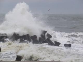 Birkákat szállító hajó miatt süllyedt el egy orosz hadihajó a Fekete tengeren