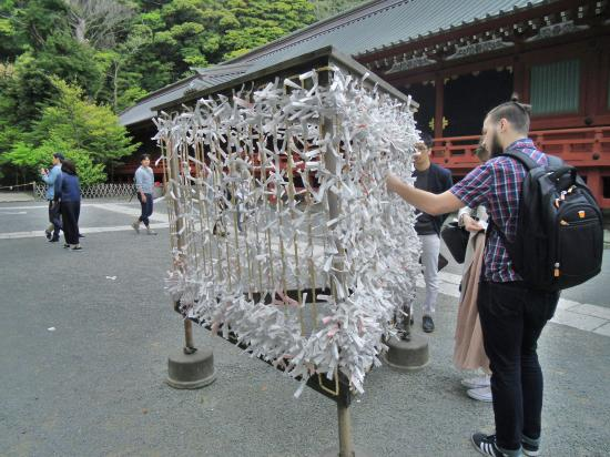 Japán cseresznyevirágzás idején (2.)
