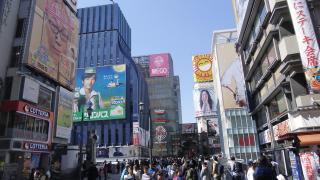 Japán cseresznyevirágzás idején (4.)