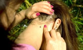 Hét Lyme-kóros megbetegedés Olt és Szeben megyében