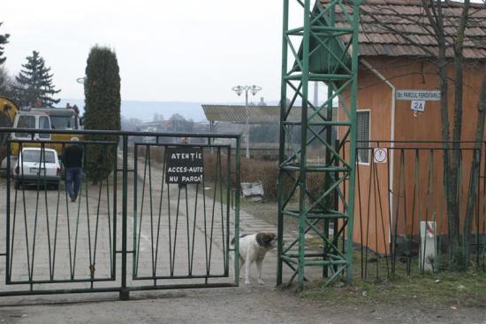 Birtokba vehetik a kolozsváriak a Vasutas parkot
