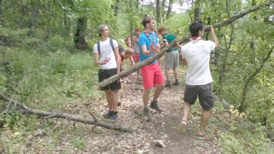 Turistautakat tisztítottak meg a Tordai-hasadéknál