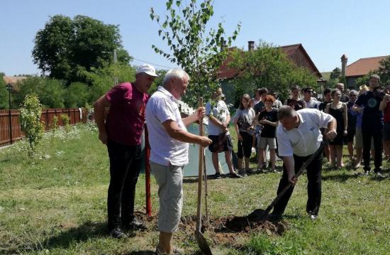 Kostyák Alpár emlékére ültettek facsemetét