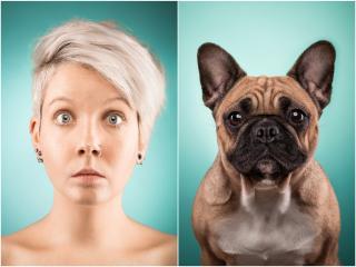 Bánatos kutyatekintet, derűs kutyafintor: mimikával kommunikál velünk a kedvencünk?