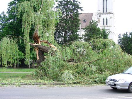 Bukarestben és tizenkét megyében okozott problémákat a szél