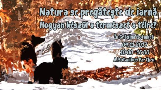 Hogyan készül a természet a télre? Holnap kiderül a botanikus kertben