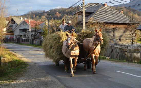 Kiépítenék az erdélyi falvak hálózatát