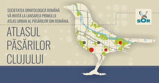 Kolozsváron mutatják be hazánk első városi madáratlaszát