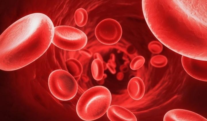 Egészségkalauz III.: Vashiányos anémia