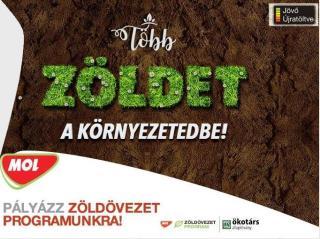 Zöldövezet program: közel 700 ezer lej környezetvédelmi projektekre