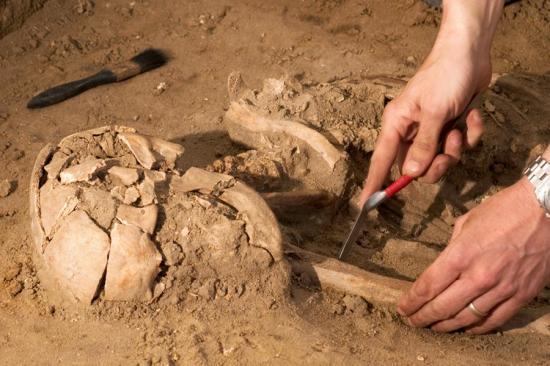 Régészeti örökségünk új törvényekben