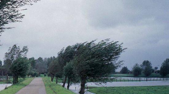 Elsőfokú, sárga színű figyelmeztetés szél miatt négy erdélyi megyében