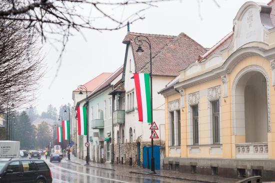 Sepsiszentgyörgy – kifogásolta a prefektus a magyar nemzeti színeket