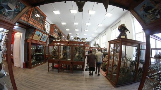 Ismét látogatható a kolozsvári Állattani Múzeum