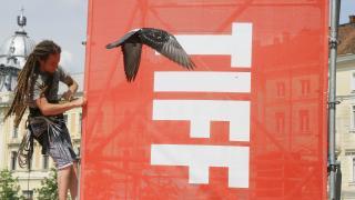 Számos magyar filmet vetítenek a 17. TIFF-en