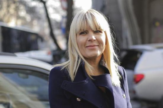 Hat év börtönre ítéltek Elena Udreat