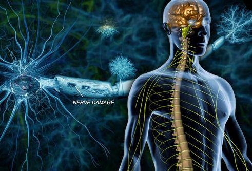 A sclerosis multiplex korai stádiumában lehet a legtöbbet segíteni a betegen