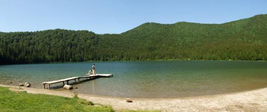 Először írtak le új baktériumfajt a Szent Anna-tóból