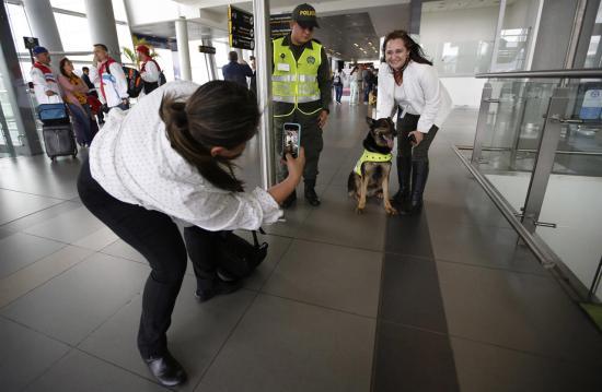 Vérdíjat tűzött ki egy drogkereső kutya fejére Kolumbia legerősebb bűnszervezete