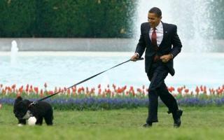 Kit támogat Barack Obama?