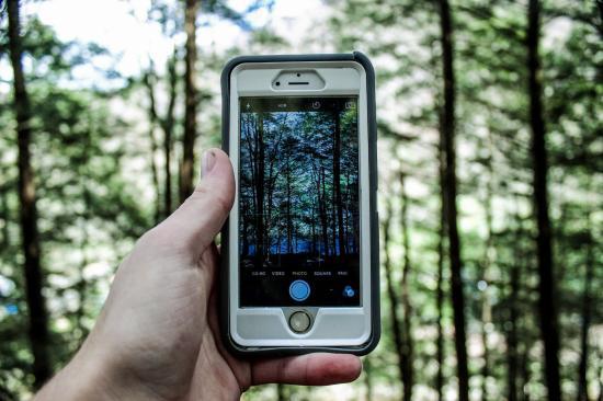 Virtuális lények gyűjtésével vizsgálható a környezet változása