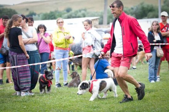 Boldog kutyák ünnepe a magyarfenesi falunapokon