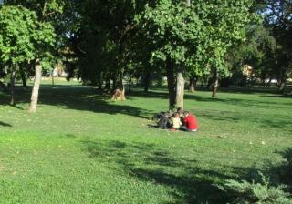 Négy albánt fogtak el a szerb-román határnál