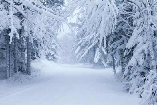 IGSU: tíz megyében okozott károkat a télies időjárás; sárga figyelmeztetés köd és szél miatt