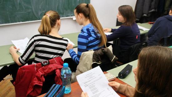 Visszaállítaná a tizedikesek vizsgáját Andronescu
