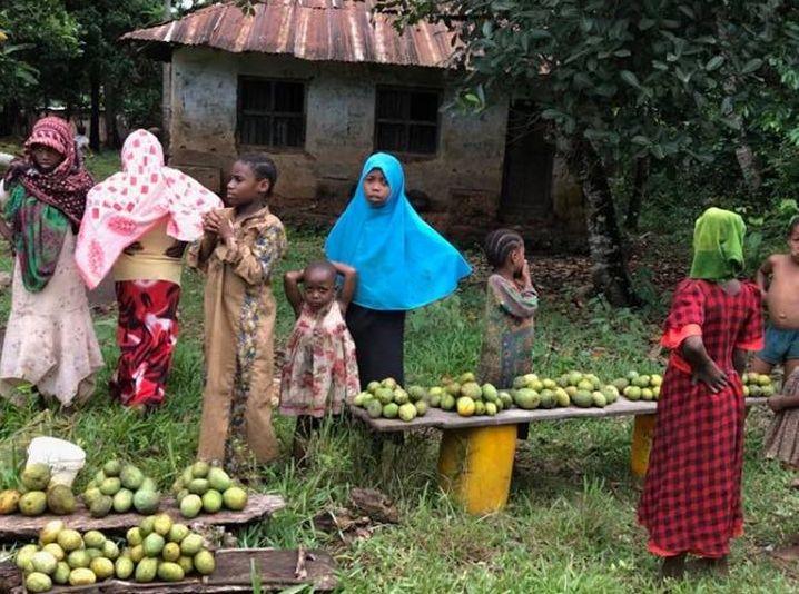 Van egy farmom Afrikában …