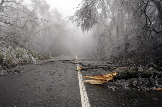 Fákat és villanyvezetékeket szakított le, közlekedési gondokat okozott az ónos eső