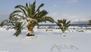 Rendkívülinek számító hóesés Hawaii egyik szigetén