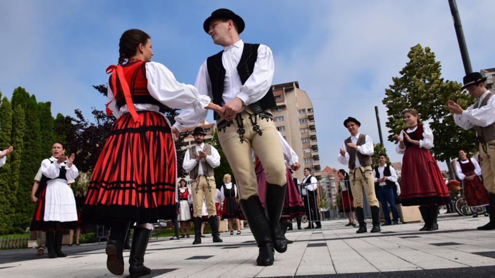 A néptáncos szakma is üdvözli az új szakot