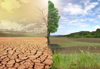 A Fehér Ház a klímaváltozás nemzetbiztonsági kockázatait vizsgáló bizottságot hoz létre