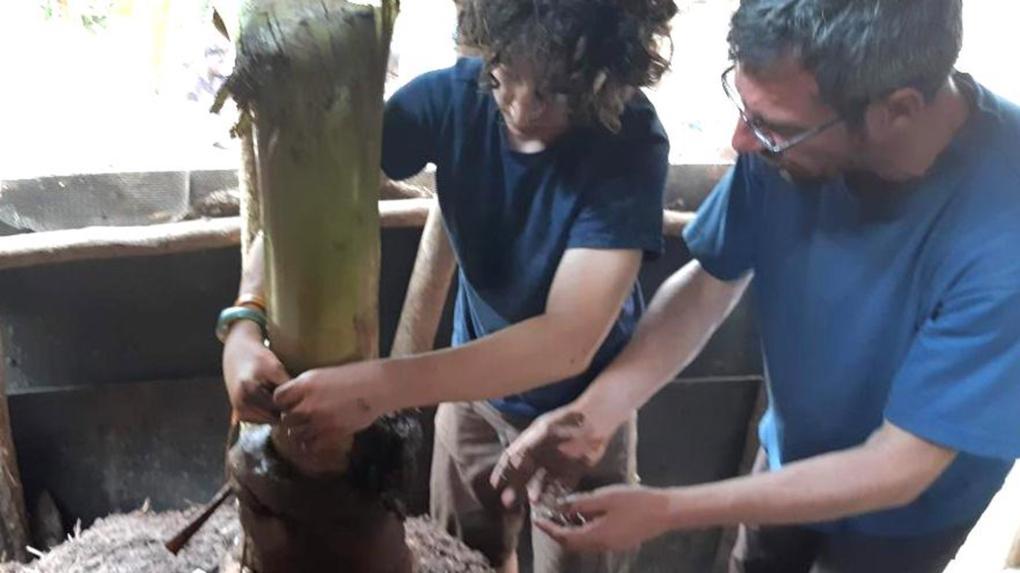 Lukácsék sárból és matokefából raktak kemencét Ugandában