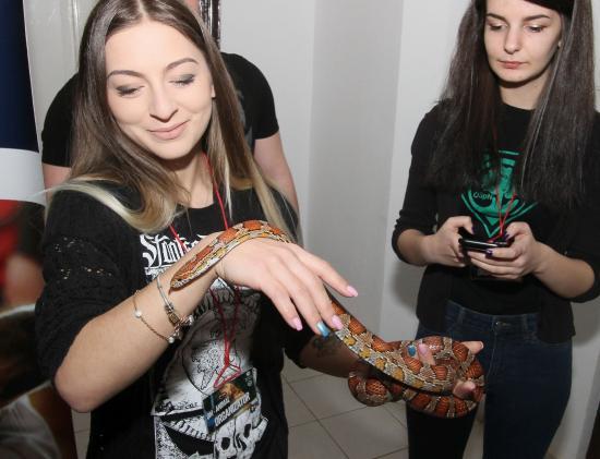 """""""Jaj, milyen hosszú! Én csak tévében láttam kígyót!"""""""