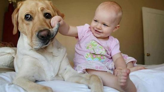 Kutyázzunk babával