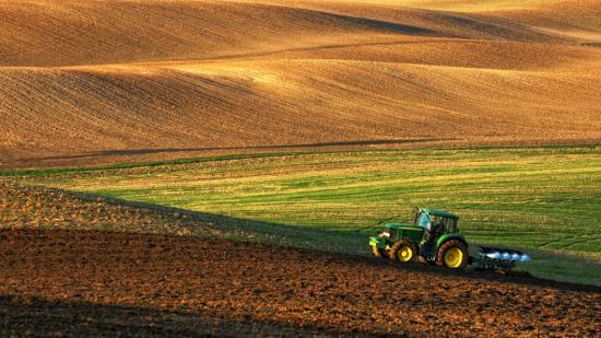 Rontja az élelembiztonságot a termőföldek kiárusítása