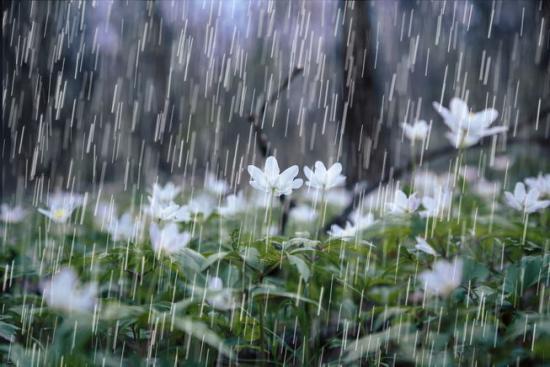 Árvízriadó, viharok, kiadós esőzések