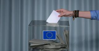 EU gyorstalpaló, avagy mire és miért ...