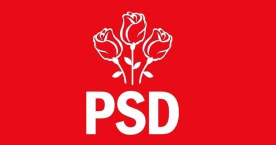 PSD: Még november előtt meg kell tartani a népszavazást