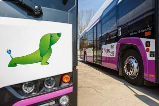 Új buszvonalak létesítését tervezi a ...