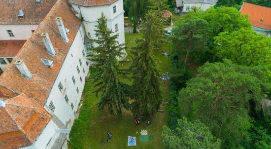 Fiatalok kerestetnek válaszúti kastélykövet-táborba
