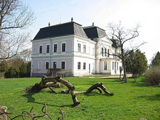 Még mindig keresik a válaszúti Bánffy-kastély felújítóját